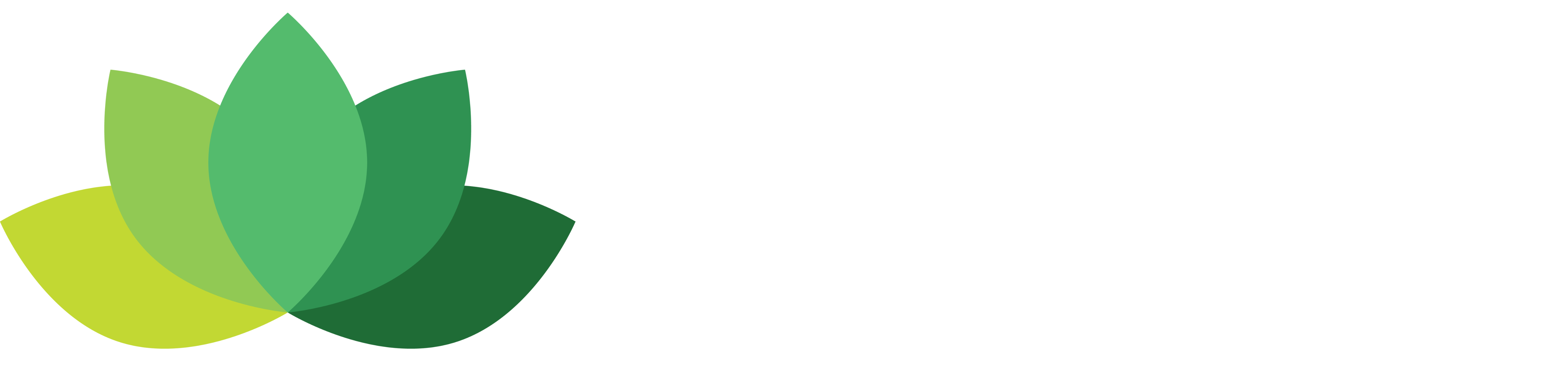 Dr. Bronfman Beauty